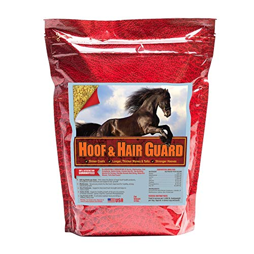 Horse Guard HOOF & HAIR GUARD EQUINE HOOF SUPPLEMENT AND EQUINE COAT SUPPLEMENT WITH AMINO ACIDS, BIOTIN, METHIONINE & SOY OIL, 10 lb