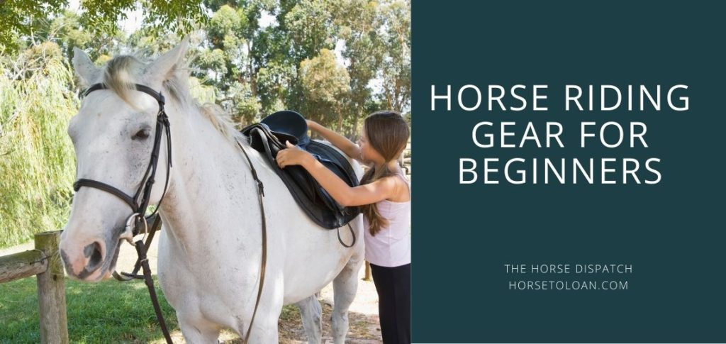 Horse Riding Gear for Beginners