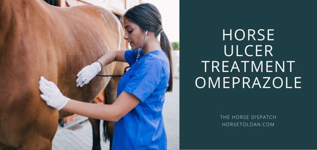 Horse Ulcer Treatment Omeprazole