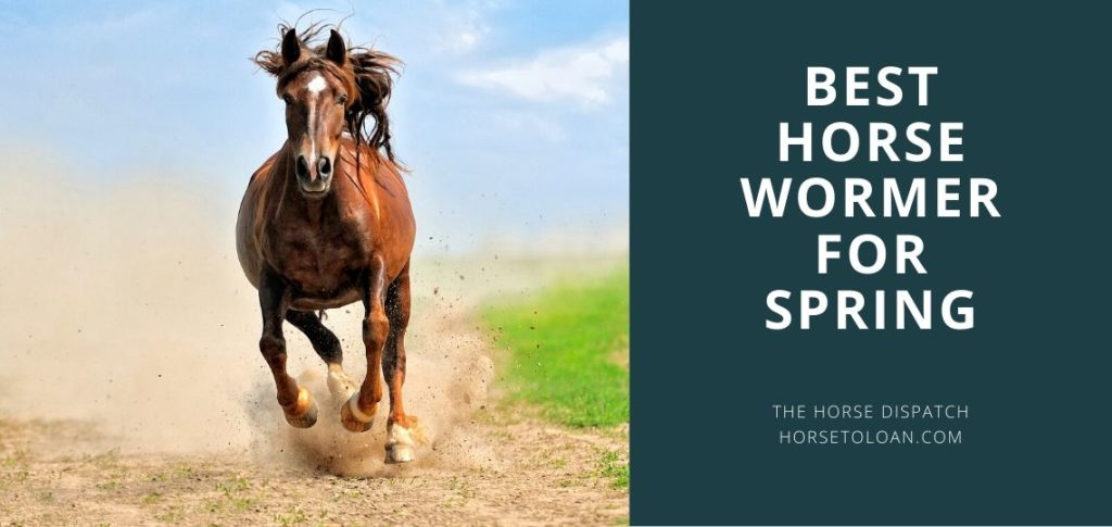 best horse wormer for spring