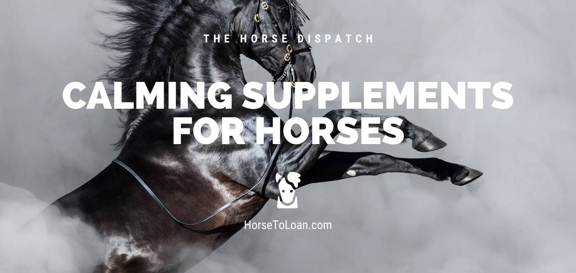 calming supplements for horses and Equine