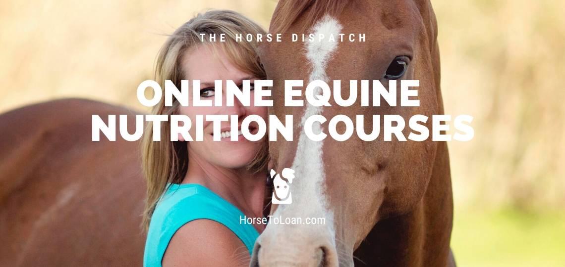 online equine nutrition courses