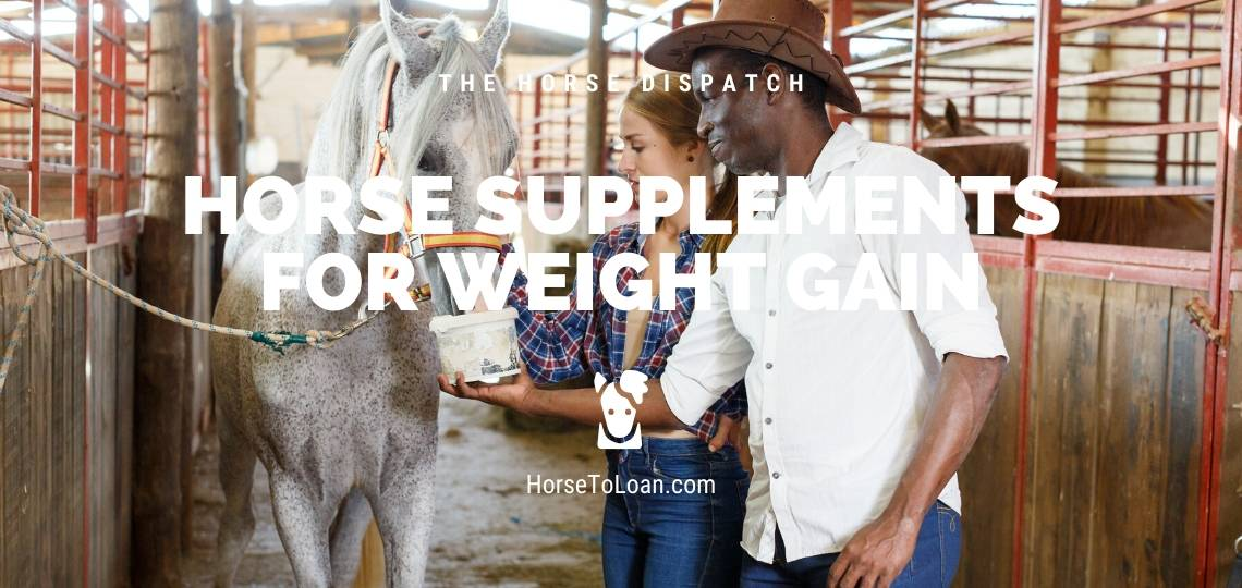 Horse Supplements for Weight Gain