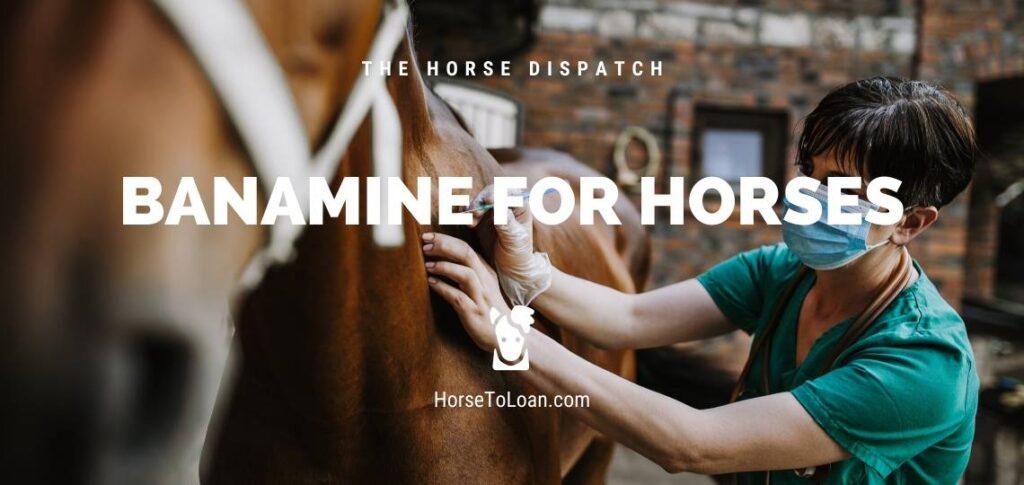 Banamine for Horses
